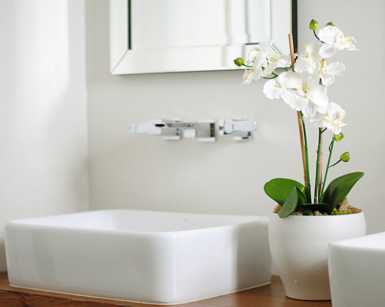 Purify Your Bathroom With Plants